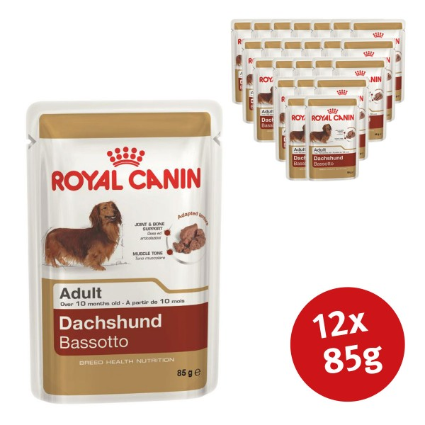 royal canin breed health nutrition dachshund 12x85g bei zooroyal. Black Bedroom Furniture Sets. Home Design Ideas