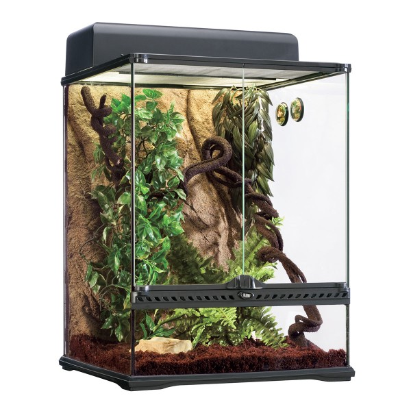 Exo Terra Rainforest Habitat Kit M