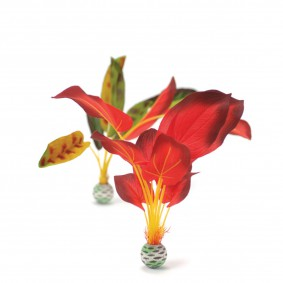 biOrb Aquariumpflanze rot/grüne Seidenpflanze L