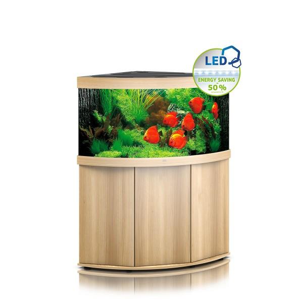 Fische & Aquarien Aquarium Ca 60l Eine Hohe Bewunderung Gewinnen