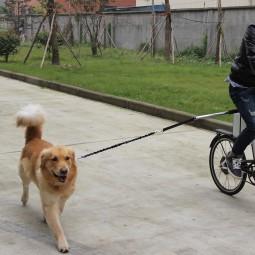 ZooRoyal Fahrradleine Lasse schwarz