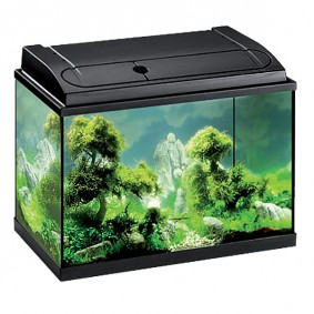 aquarium becken g nstig kaufen bei zooroyal. Black Bedroom Furniture Sets. Home Design Ideas