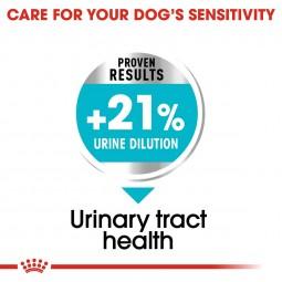 ROYAL CANIN Urinary Care MINI Trockenfutter für kleine Hunde mit empfindlichen Harnwegen