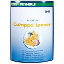 DENNERLE AquaRico Catappa Leaves, 10 Stück Seemandelbaumblätter