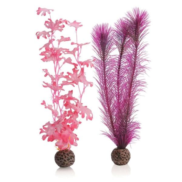 biOrb Kelppflanze pink