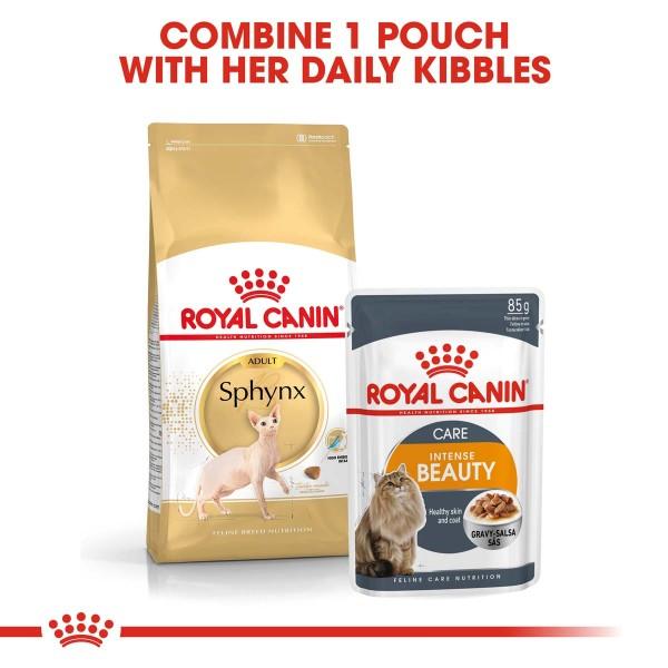 ROYAL CANIN Sphynx Adult Katzenfutter trocken