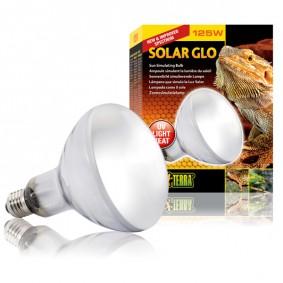 Exo Terra Solar Glo Ampoule pour terrarium