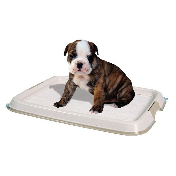 Trixie Welpentoilette Puppy Loo