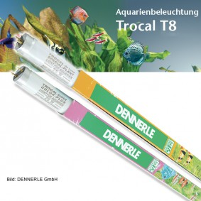 Dennerle Trocal de Luxe T8 spécial plantes + Color Plus - Tubes fluorescents pour illumination des plantes d'aquarium