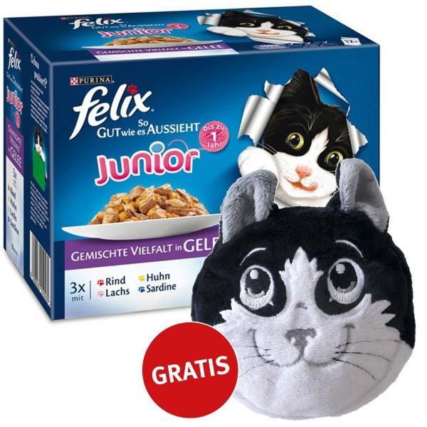 Felix Multipack Junior Gemischte Vielfalt in Gelee 48x100g plus gratis Katzenkissen
