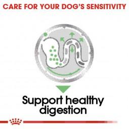 ROYAL CANIN DIGESTIVE CARE Nassfutter für Hunde mit empfindlicher Verdauung 12x85g