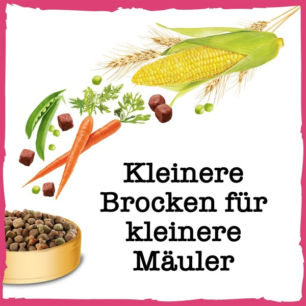PURINA BENEFUL Kleine Genießer Hundetrockenfutter für kleine Rassen mit Rind & Gemüse