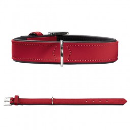 Hunter Halsband Softie - Rot / Schwarz