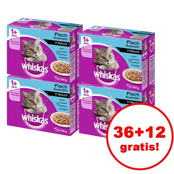 Whiskas 1+ Fischauswahl in Sauce 12er Multipack 36 plus 12 gratis