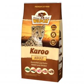 Wildcat Karoo mit Kaninchen