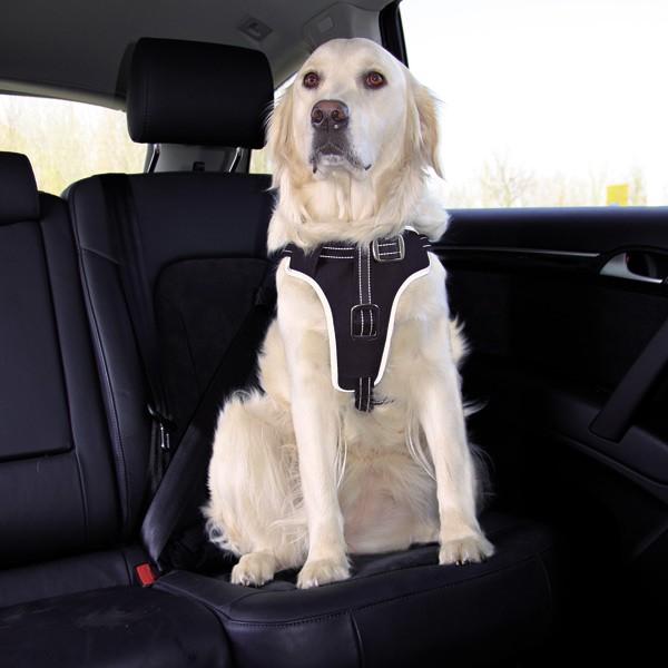 Trixie Dog Protect Sicherheitsgeschirr für Hunde - XL 80-100cmx25cm