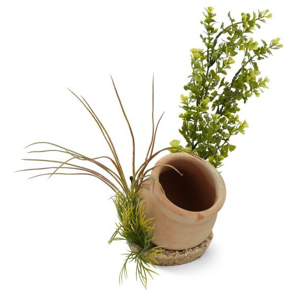 Sydeco Künstliche Aquariumpflanzen - Jar Plant