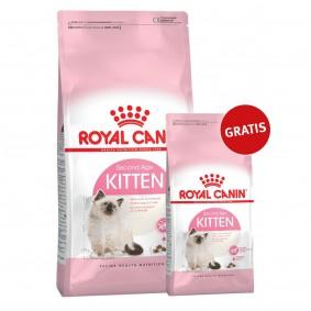 Royal Canin Katzenfutter Kitten 10kg+2kg gratis