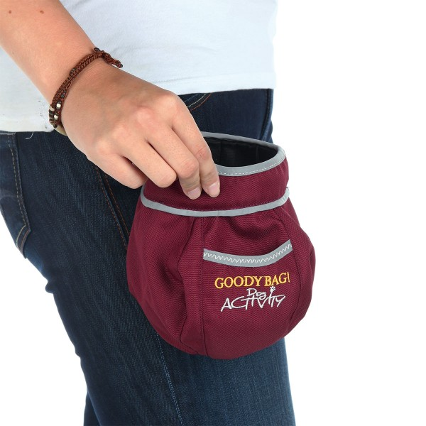 Trixie Dog Activity Snack-Tasche Goody Bag