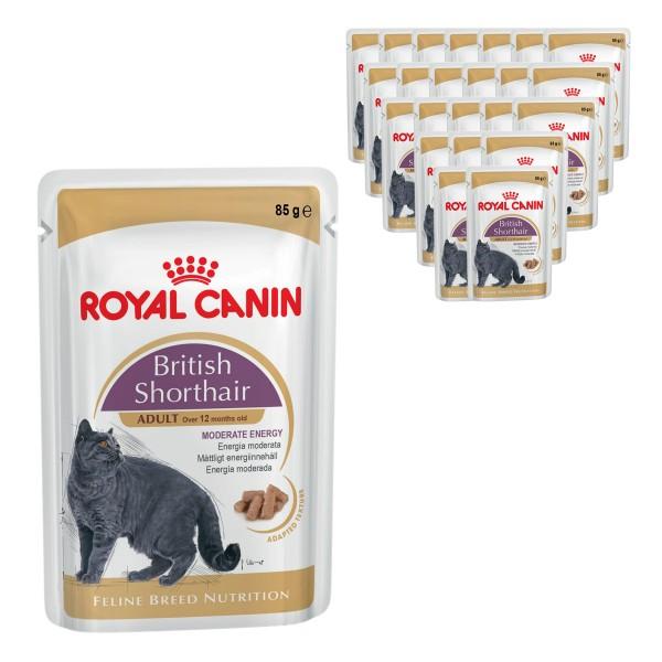 Royal Canin Feline Breed Nutrition British Shorthair 12x85g