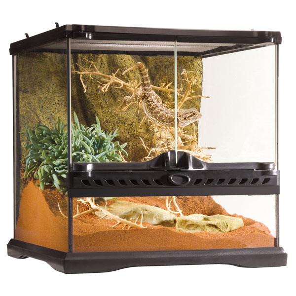 exo terra glasterrarium 30x30x30 cm g nstig kaufen bei. Black Bedroom Furniture Sets. Home Design Ideas