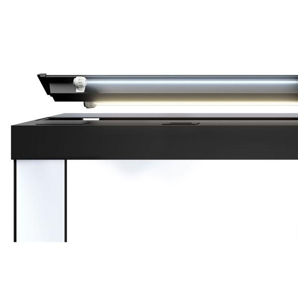 juwel rio 180 led komplett aquarium mit unterschrank sbx. Black Bedroom Furniture Sets. Home Design Ideas
