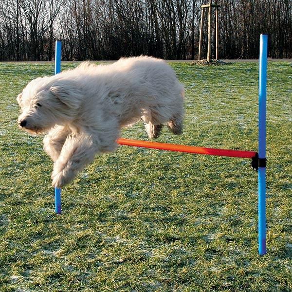 Trixie Dog Activity Agility Hürde