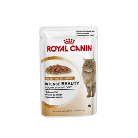 Royal Canin Katzenfutter Intense Beauty in Gelee 12x85g
