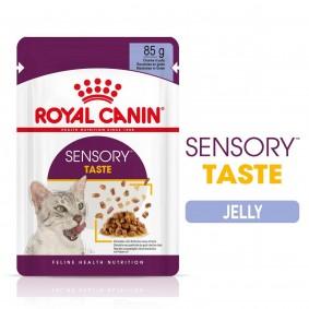 Royal Canin Sensory Taste Jelly